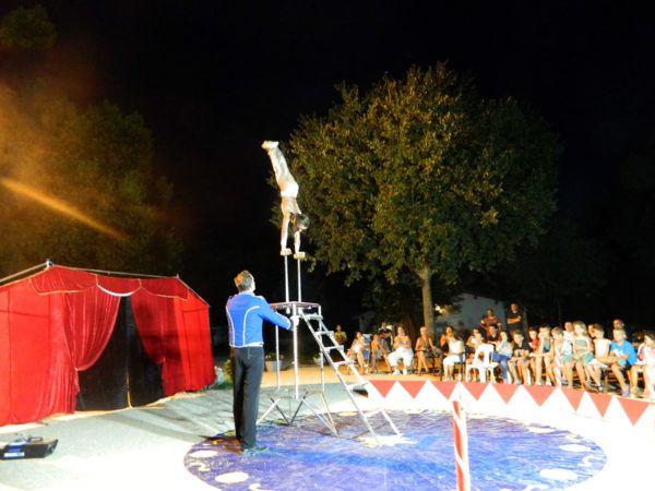 Circus evening